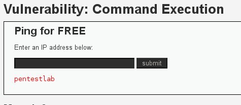 Testing for command execution