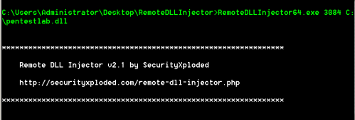RemoteDLLInjector - Injecting DLL