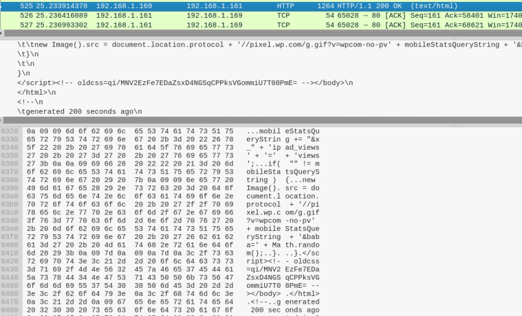TrevorC2 - WireShark Traffic